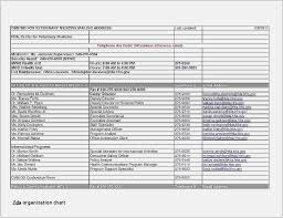 Free Collection Organizational Chart Templates Word Excel