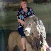 Kathy Rhodes (kathyrhodes55) - Profile | Pinterest
