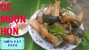 Ốc Mượn Hồn   Món Ăn Lạ Tai - Lạ Miệng    Oc Muon Hon - Món Ăn Dân Dã ▻  MIỀN TÂY FOOD - YouTube