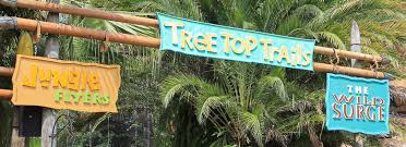 busch garden tampa florida. Busch Gardens Tampa News \u0026 Notes - October 2017 Touring Central Florida Garden