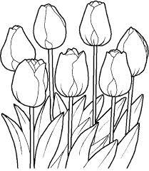 Free Printable Flower Garden Coloring Pages Coloring Garden Secret