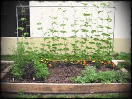 raised bed garden ideas wonderful easy beds diy and design building a vegetable gardening extension