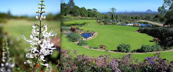 spring has sprung celebrate spring with a visit to the maleny botanic gardens only 10 for one valued at 16