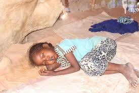 Image result for Somali IDP