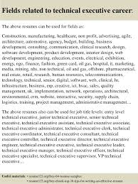 ... 16. Fields related to technical executive ...