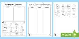 Producer And Consumer Venn Diagram Producers Consumers And Decomposers Sorting Worksheets