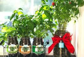 indoor vegetable gardening supplies elegant garden center at the home depot hours water