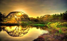 Nature Wallpaper HD Background for ...