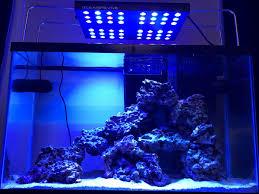 29 Gallon Tank Light 29 Gallon Tank Build Reef2reef Saltwater And Reef Aquarium