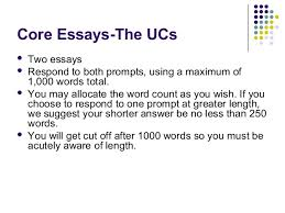Personal Essay Prompts 2013 Essay Example 1998 Words Qfessayxzyl