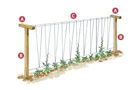 4 diy vegetable garden trellises