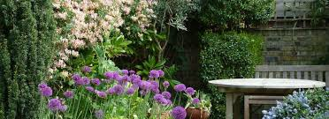 Small Picture Dilip Lakhani London Garden Design Dilip Lakhani