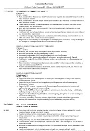 Digital Marketing Analyst Resume Samples Velvet Jobs