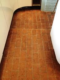 brick paved floor after regrouting and cleaning peppard