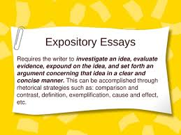 Essay writers online  Actions the Department of Homeland Security implemented post      buy  custom essays online