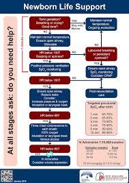 Newborn Resuscitation Litfl Ccc Resuscitation