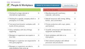 workplace values assessment my career profile worklifegroup