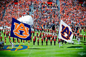 auburn tigers wallpaperswallpaper of insect and s