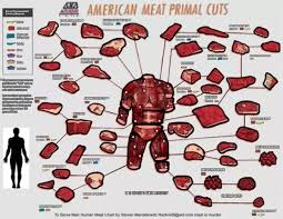 Human Meat Cuts Chart If Humans Were Divided Into Cuts Of Meat What Would They Be