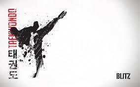 Taekwondo Wallpapers - Top Free ...