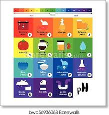 Ph Scale Color Chart The Ph Scale Universal Indicator Ph Color Chart Diagram Art Print Poster