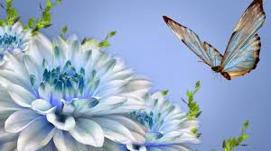 HD Wallpapers 1080p Nature Love ...