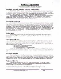 Physician Professional Services Agreement Template Detail Rubinstein ...