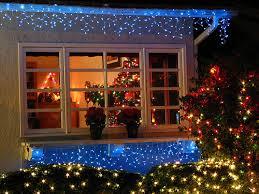 Bouncing Bertieu0027s Blog Ferryhill Christmas WindowsChristmas Tree In Window