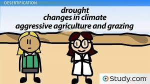 deforestation desertification declining biological diversity deforestation desertification declining biological diversity video lesson transcript com
