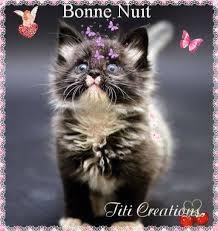 Bonne nuit à tous bisous - Titi Créations