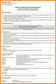 Vb Developer Resume Cover Letter Sample Developer Resume Web