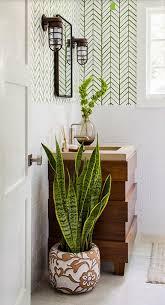 Bathroom Plant Decor Idea- 1