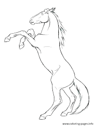 Coloring Wild Horse Coloring Pages To Print
