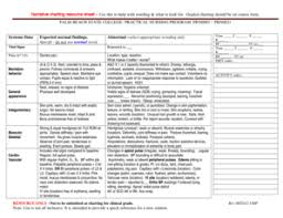 Fillable Online Palmbeachstate Narrative Charting Resource