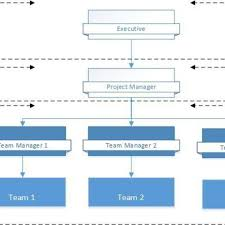 Project Team Structure Chart Prince2 Project Management Team Structure Download