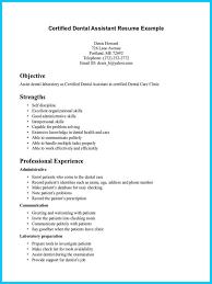 Dentist Resume Dentist Resume Sample Pdf Rimouskois Job Resumes 20