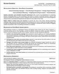 skills and competencies resumes resume key skills and competencies danaya us