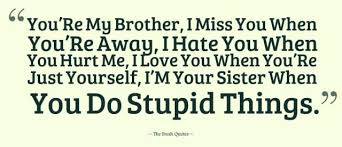 Brotherly Love Quotes Beauteous Stupid Brotherly Love Happy Shappy