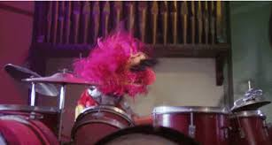 animal muppet drums gif. Wonderful Gif Animal Chicken Muppets GIF Intended Muppet Drums Gif P