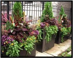 chicago gardening service and landscape