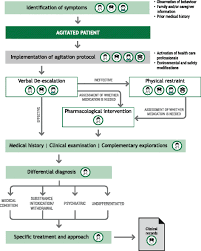algorithm for action in agitation algorithm for the initial identification and first steps in the management of the patient with psyctor agitation