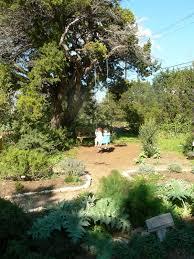 fun for kids at the natural gardener