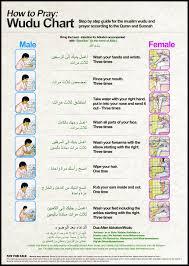 Wudu Chart Large Size Free Modesty Collection