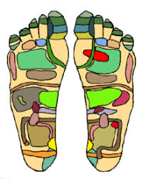 Itec Reflexology Blank Foot Chart Massage Revolvy