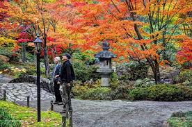Small Picture Japanese garden fall color can inspire your garden design