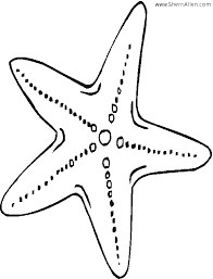 Small Picture How To Draw A Sea Star Drawing Lessons3 Source P7ijpg Coloring