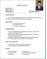 Formatting Resume Extraordinary Standard Resume Format Extraordinary Sample Resumes Example