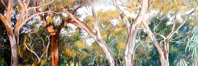 contemporary australian landscape and wildlife paintings by philip adams