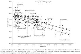 54 Veritable Dog Longevity Chart
