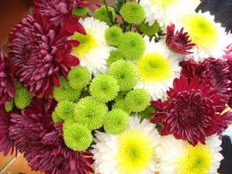 types of flowers in bouquets. chrysanthemums should already be familiar to you if have any interest in tropical flowers at all, given their popularity. one of the things which make types bouquets
